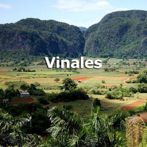 Vinales Tour