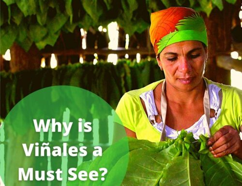 Why is Vinales one of our Must visit places?